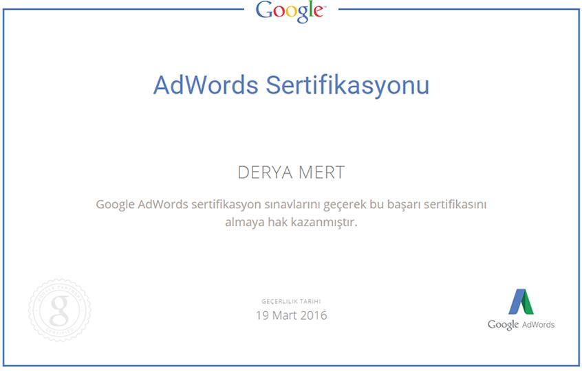 Google Adwords Uzmanlık Sertifikası